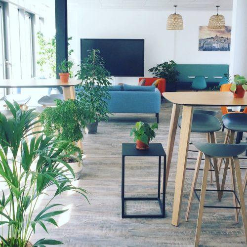 Aménagement indoor et outdoor (rooftop 200m²) / Entretien