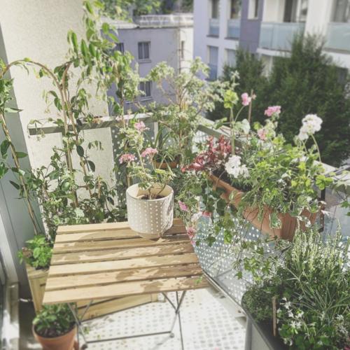 Un balcon optimisé dans le 19è