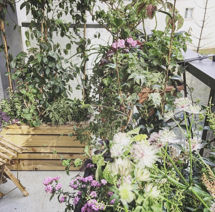 Le balcon réenchanté (19è)
